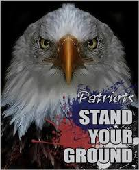 Eagle-patriot stand your ground