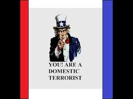 domestic-terrorist-you-are-a-domestic-terrorist