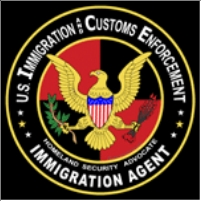 Ice emblem colorful